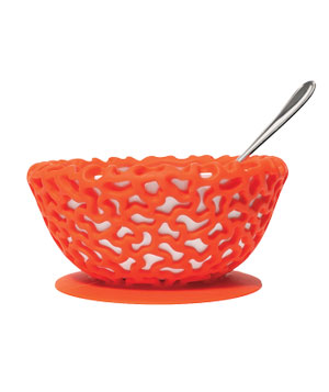 Protective Bowl Cover
