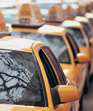 Row of yellow cabs