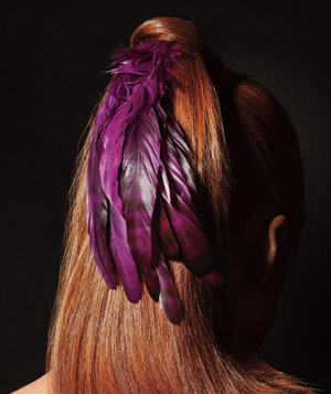 Feathered ponytail