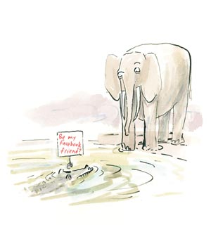Illustration of an elephant looking at an alligator