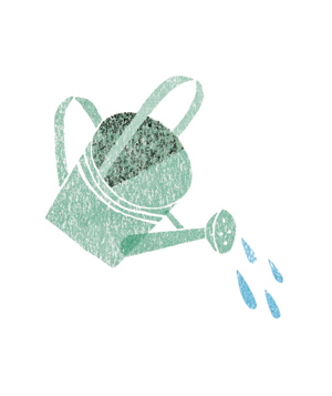 Illustration of a watering can