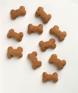Generic dog biscuits