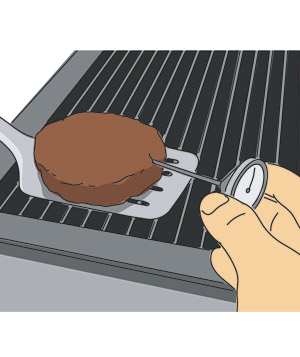Illustration of thermometer in meat