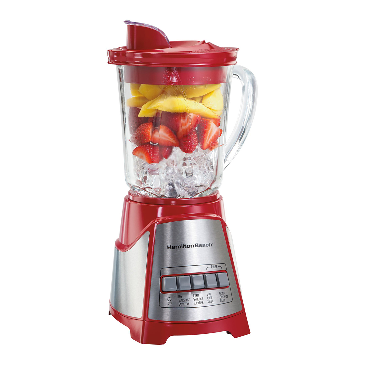 Hamilton Beach Power Multi-Function Blender