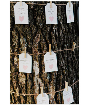 Clothespin and twine escort cards