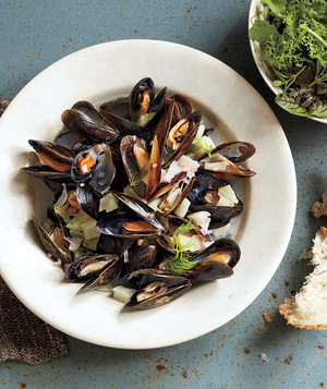 Mussels With Fennel and Wine