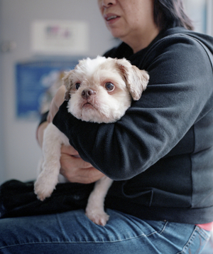 Woman holding dog on lap at veterinarian's office