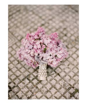 Bouquet of pink Queen Anne's lace