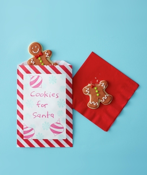Holiday treat bags with gingerbread cookies