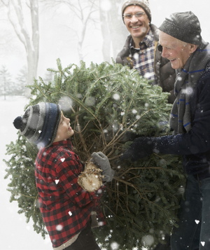 Family carrying Christmas tree in snow