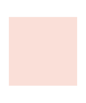 PPG Pittsburgh Paints Cameo Rose