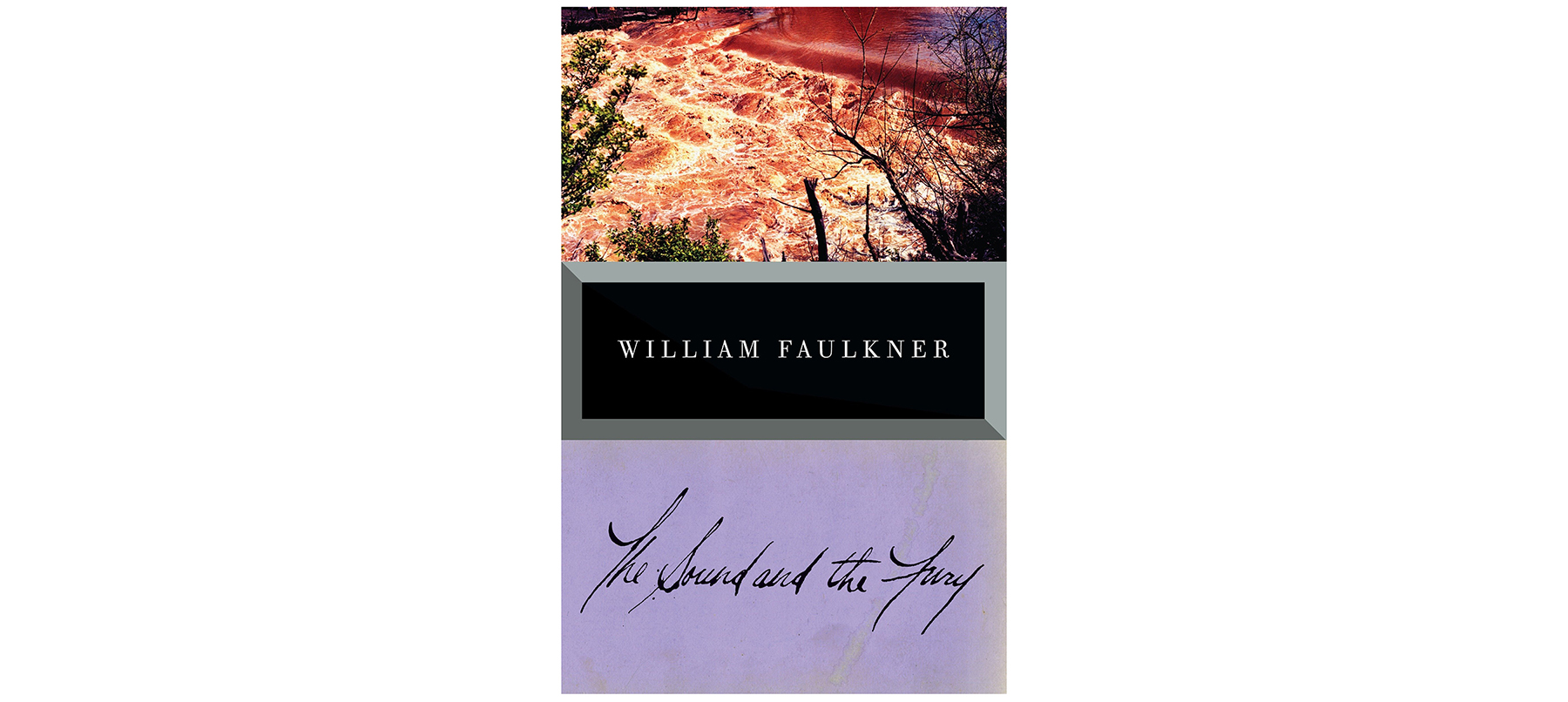 The Sound and the Fury, by William Faulkner