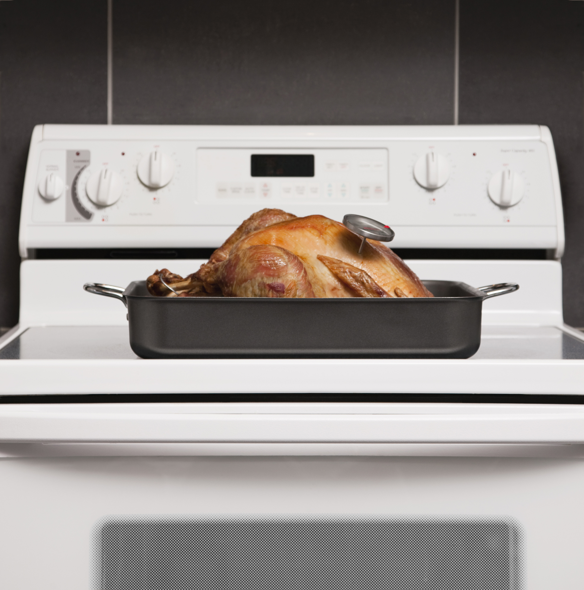 Roasted turkey with thermometer