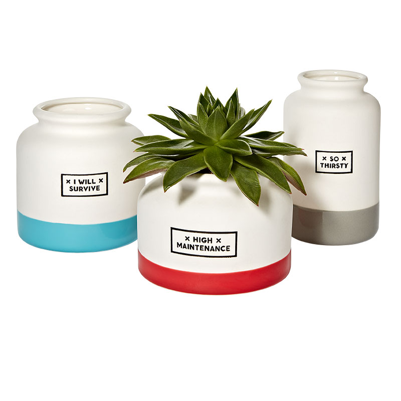Girlfriend Gifts: Planters and Vases