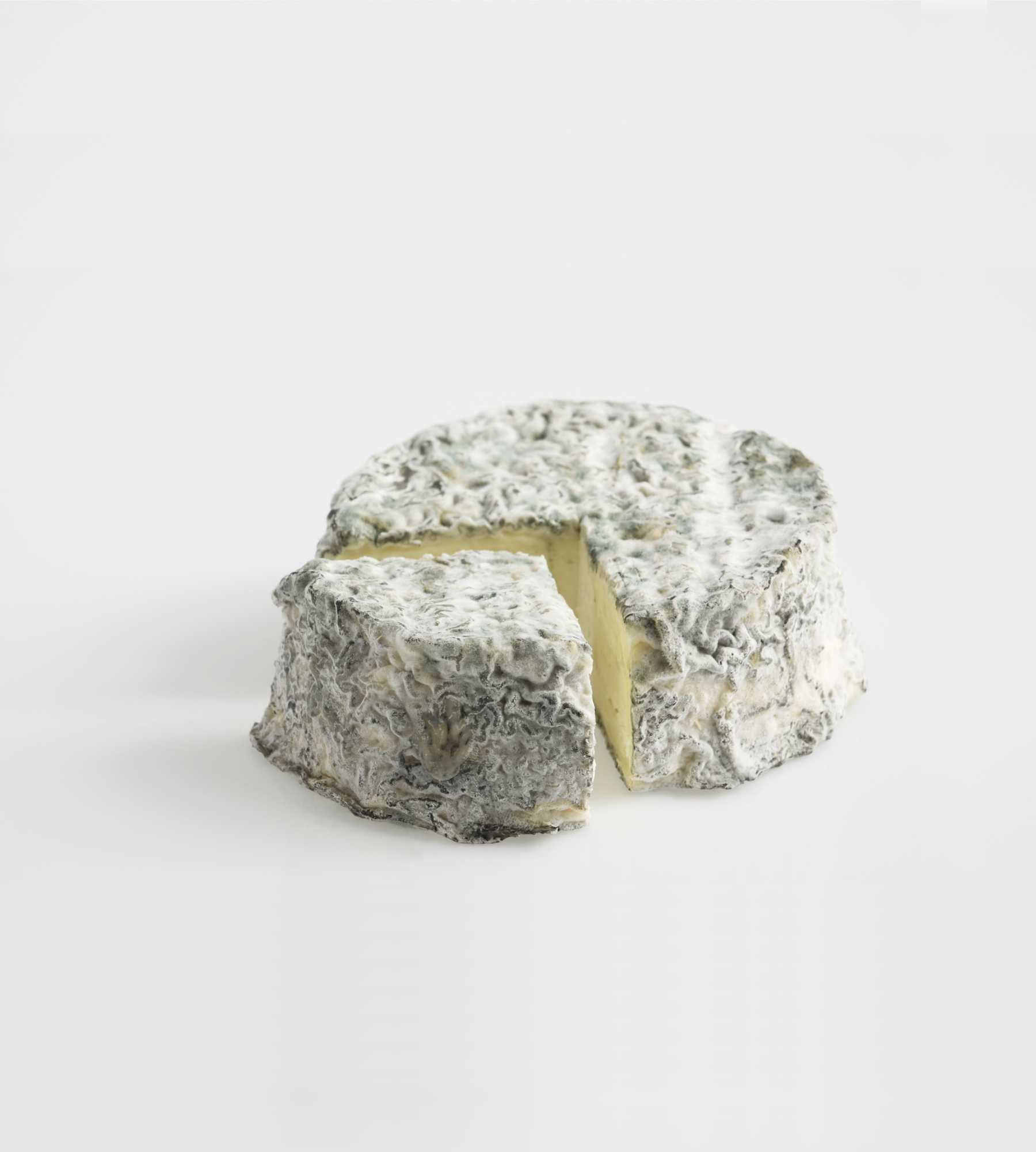 Ash rind goat cheese