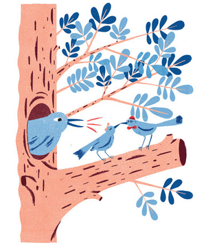 Illustration of three blue birds in a tree