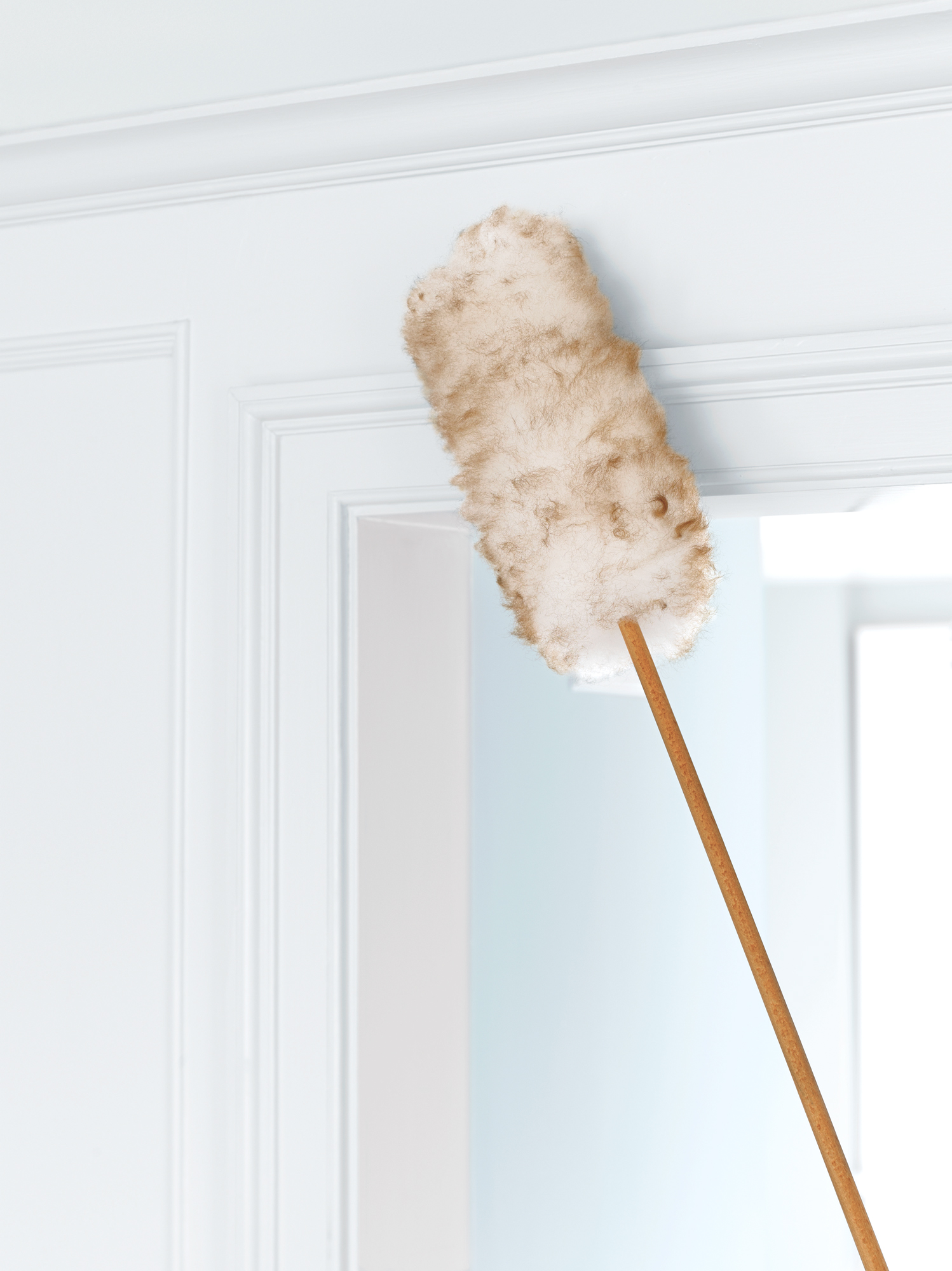 Duster on wall/moulding