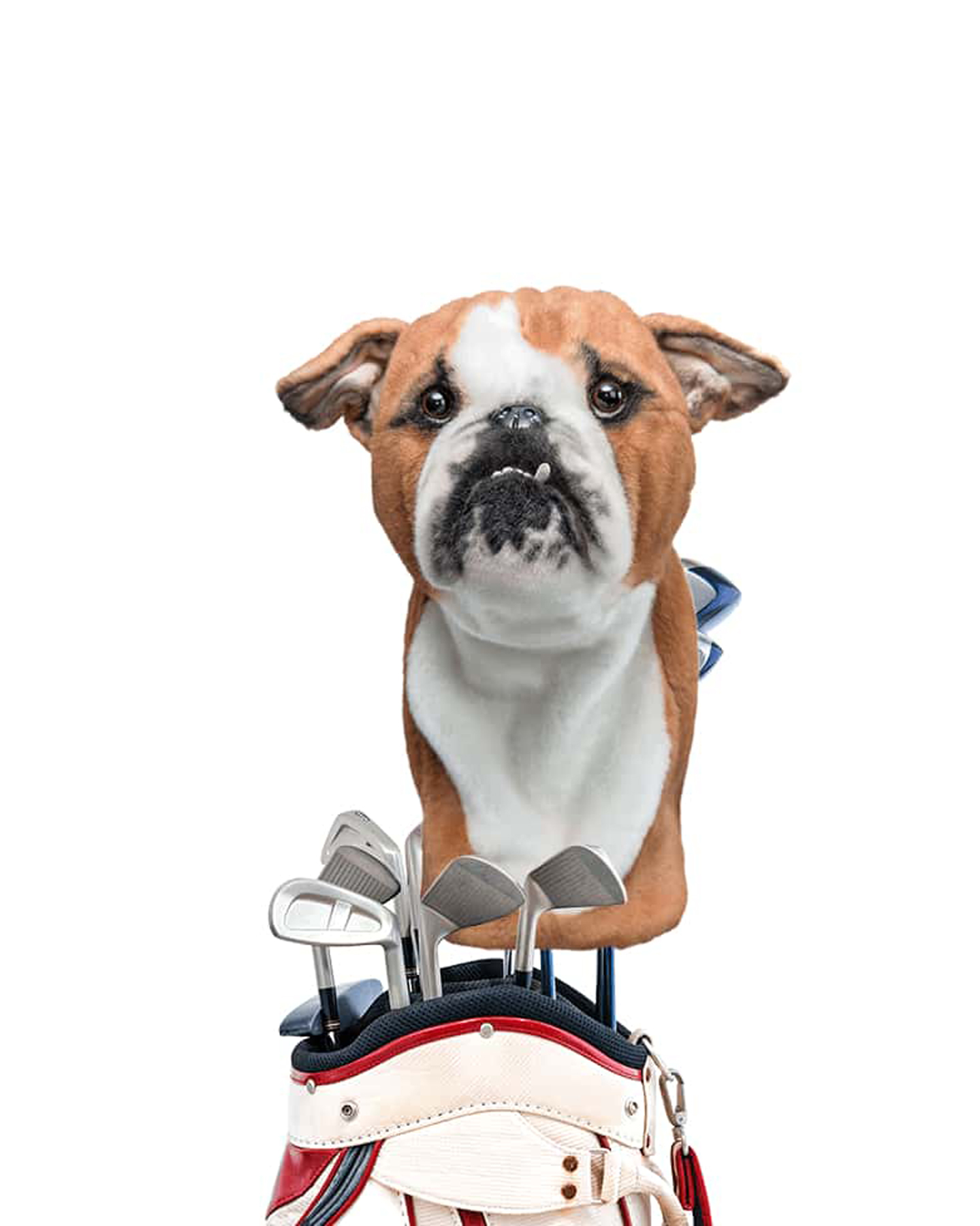 Funny gifts for men - Personalized Pet Golf Club Headcovers