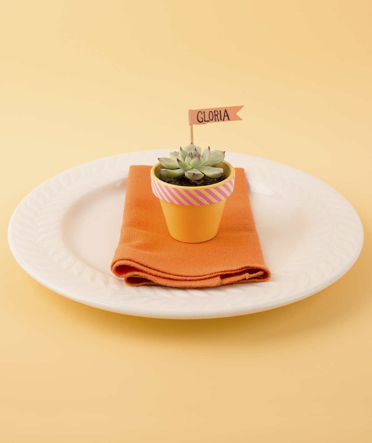 Potted Succulent Place Card Holder