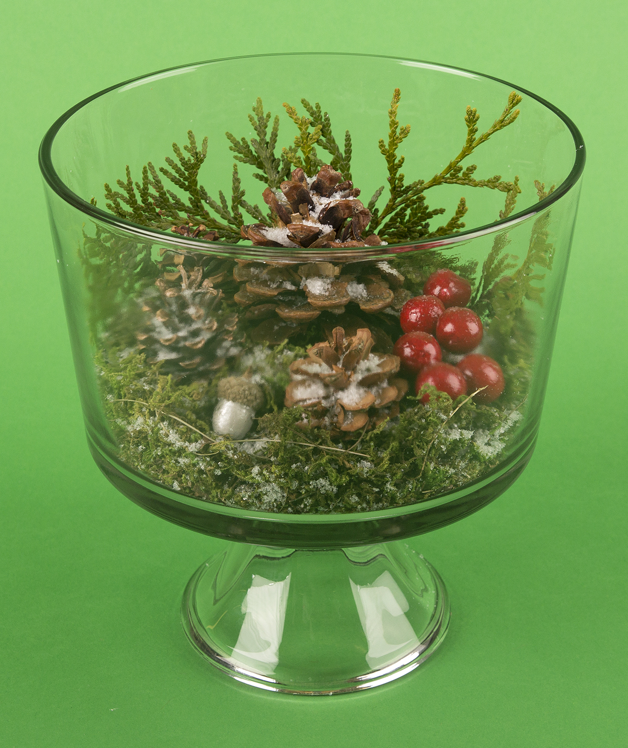 Christmas crafts ideas - Trifle Bowl Terrarium