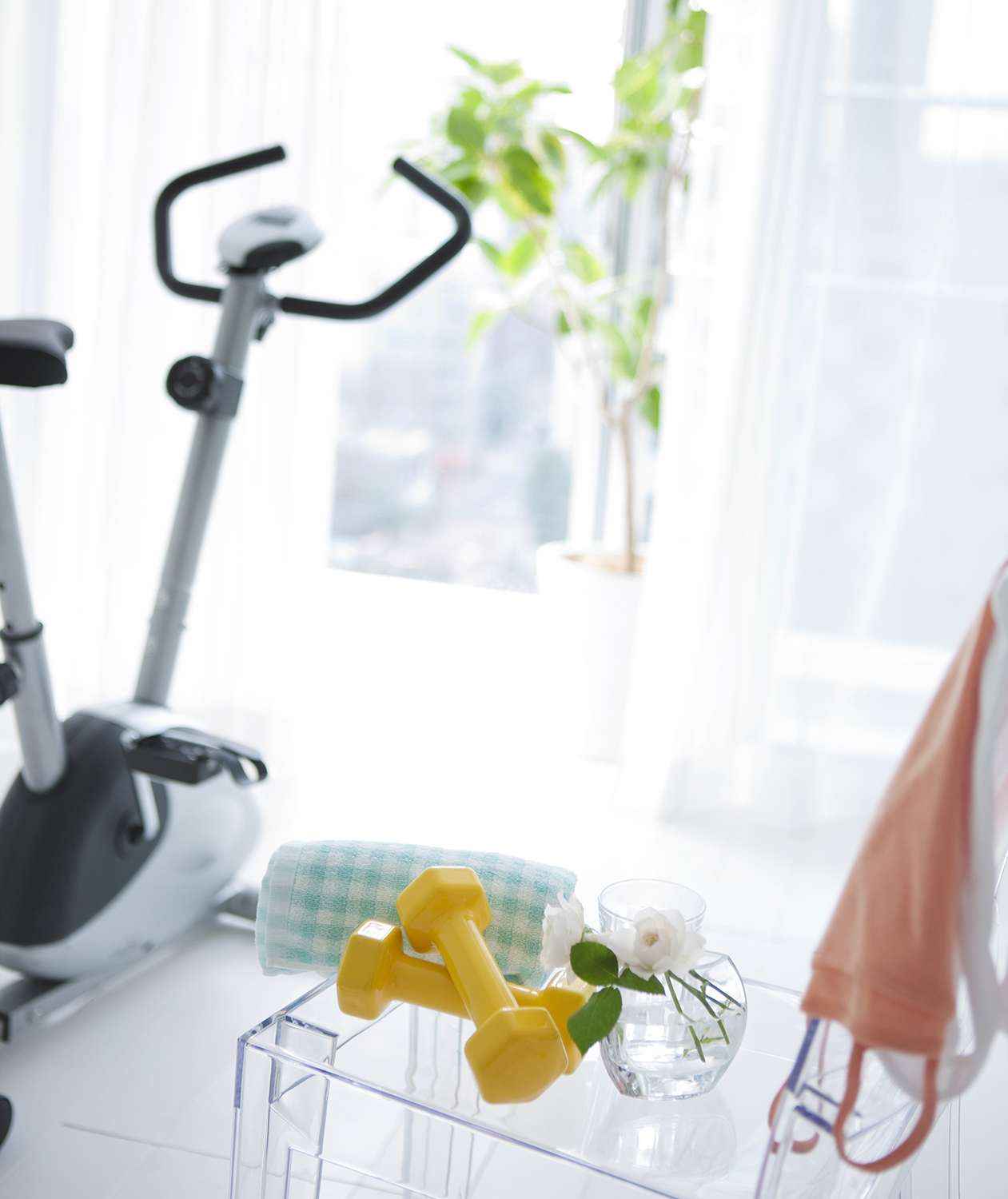 Home fitness space