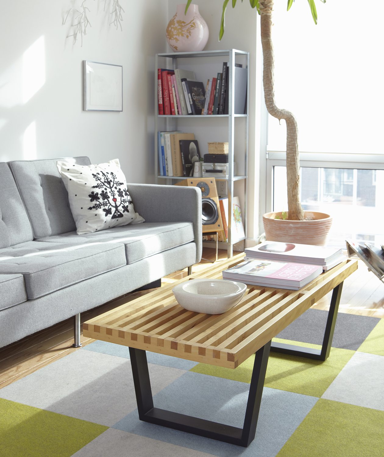 Modern loft apartment with wooden coffee table and large houseplant