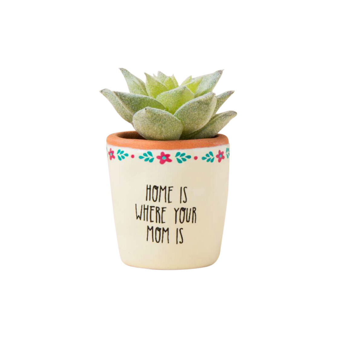Home Is Where Your Mom Is Mini Succulent