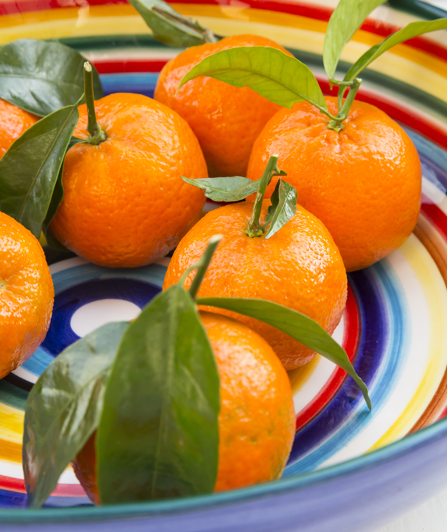 Striped bowl with tangerines