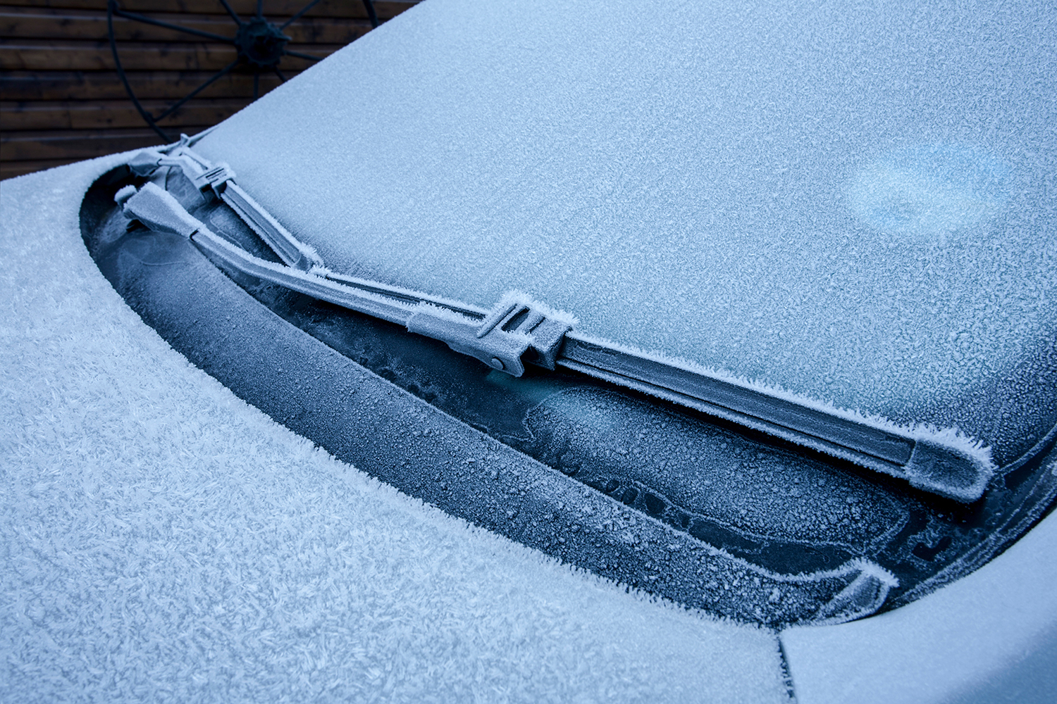 Frosted Car Window