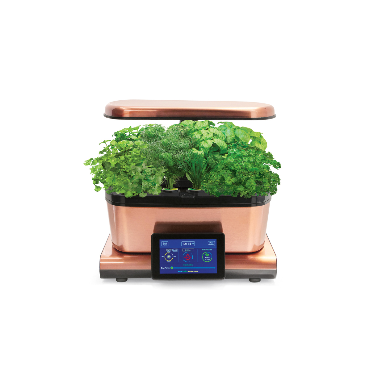 AeroGarden Harvest Touch with Gourmet Herbs Seed Pod Kit
