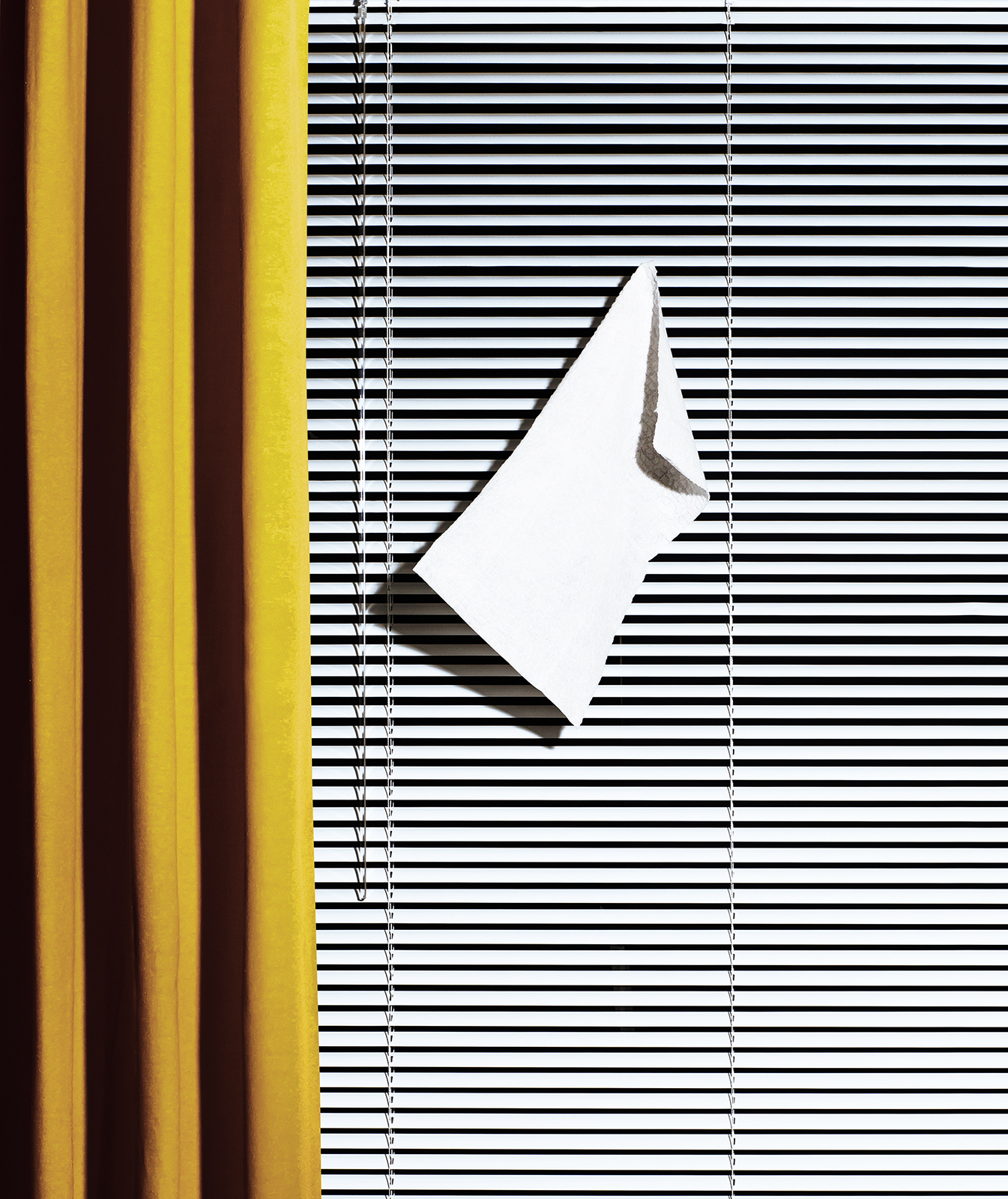 Blinds with cleaning cloth