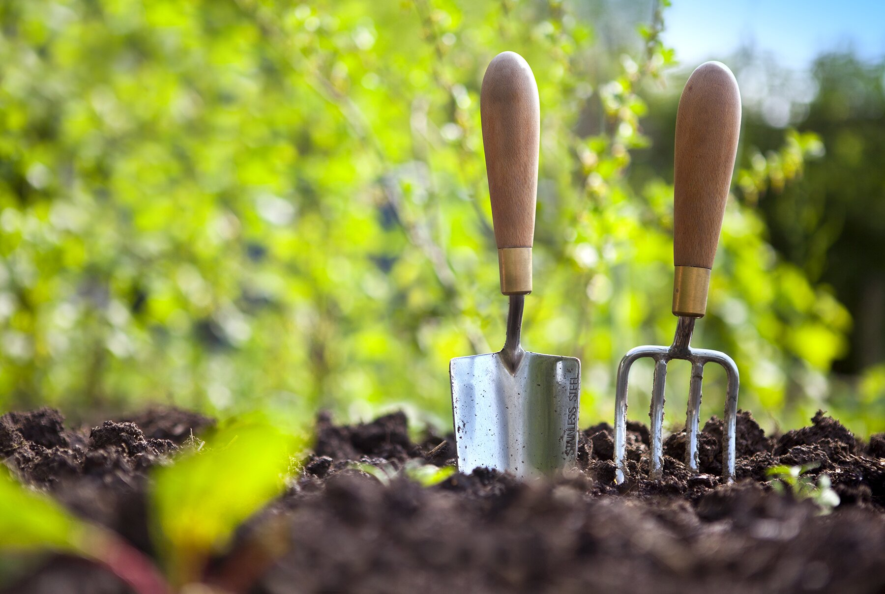 Summer Gardening Tips | Real Simple
