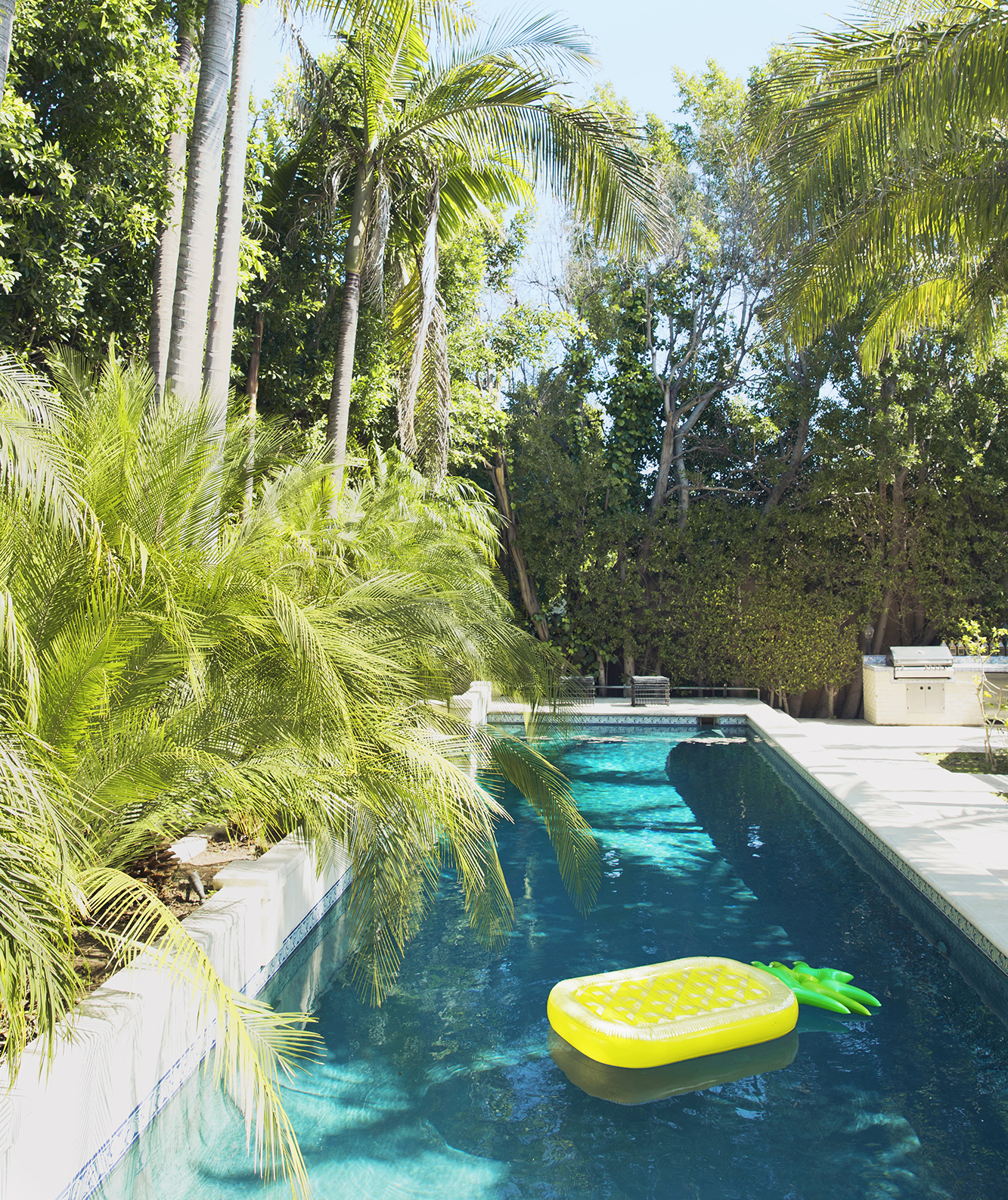 Pool surrounded by palms