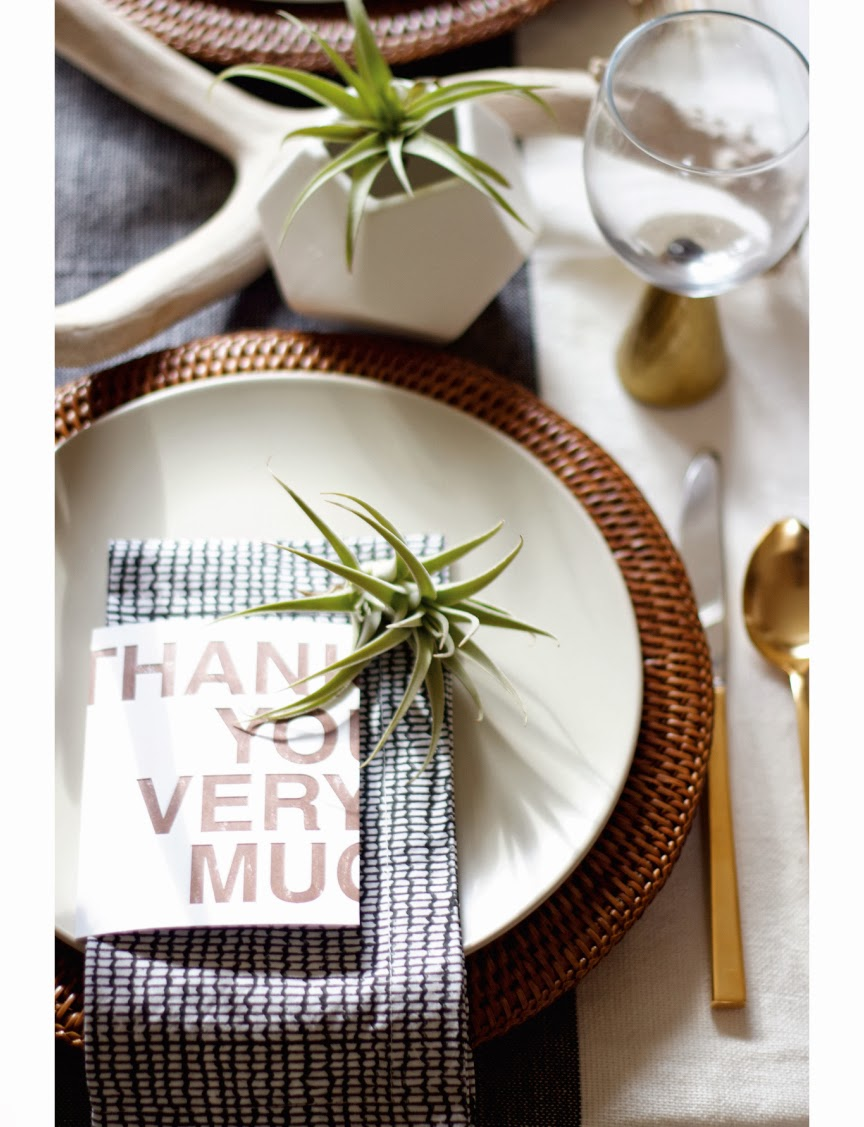 Thanksgiving table setting with air plants and deer antlers