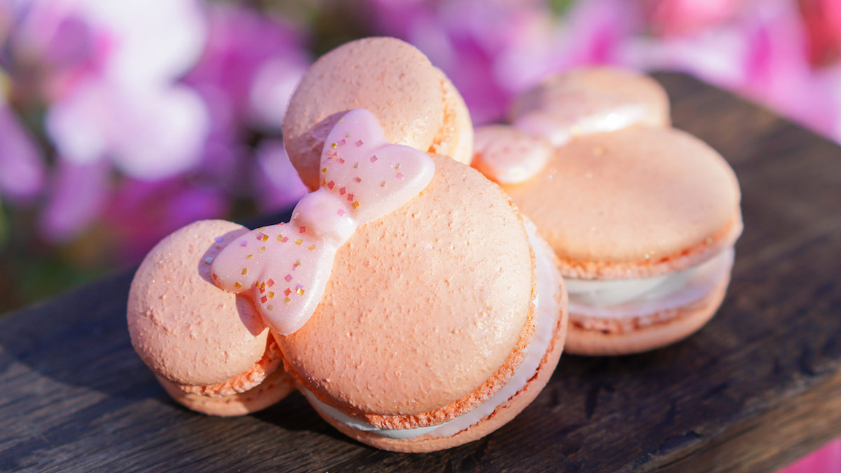 Disney Rose Gold Macarons
