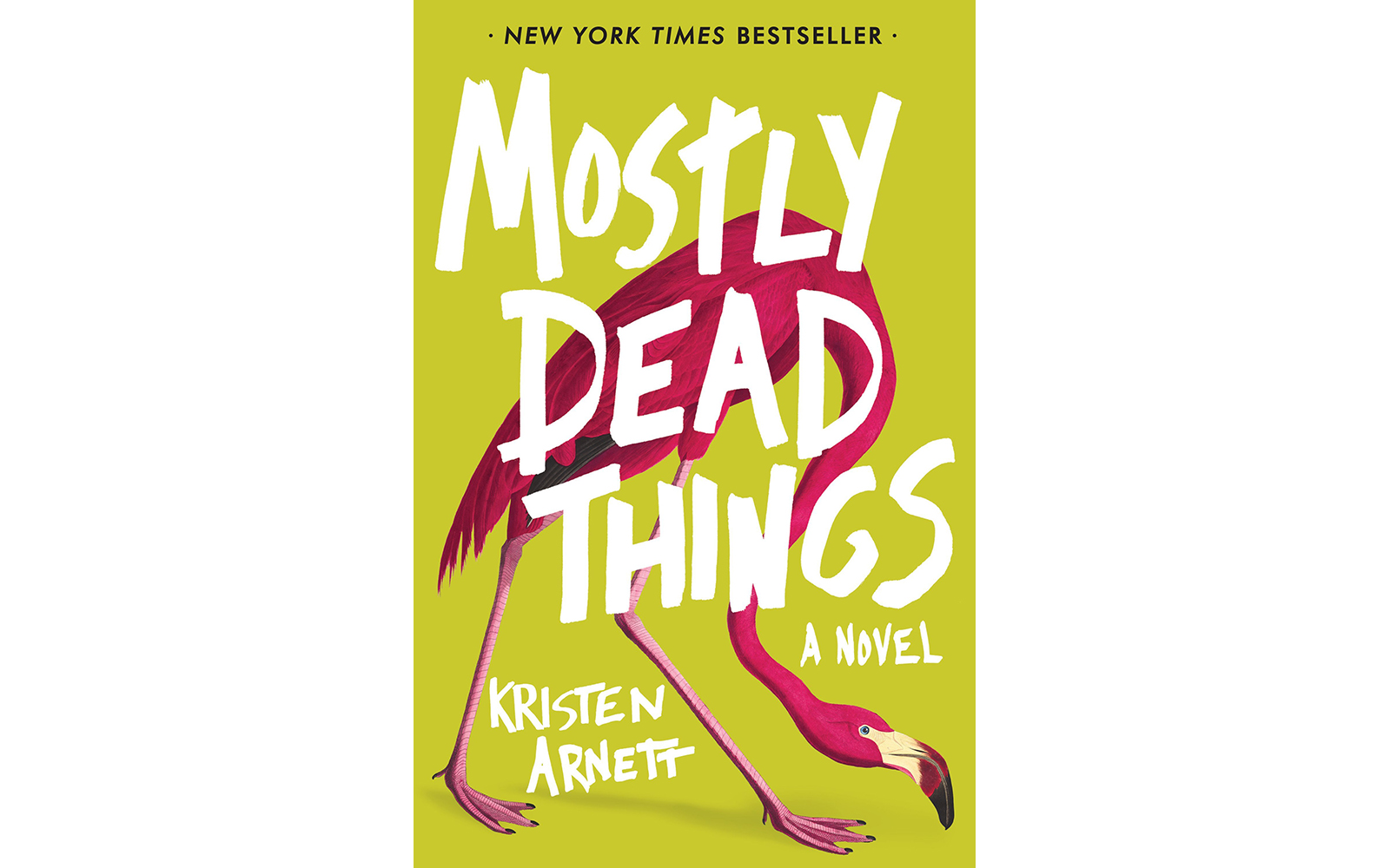 Cover of Mostly Dead Things, by Kristen Arnett