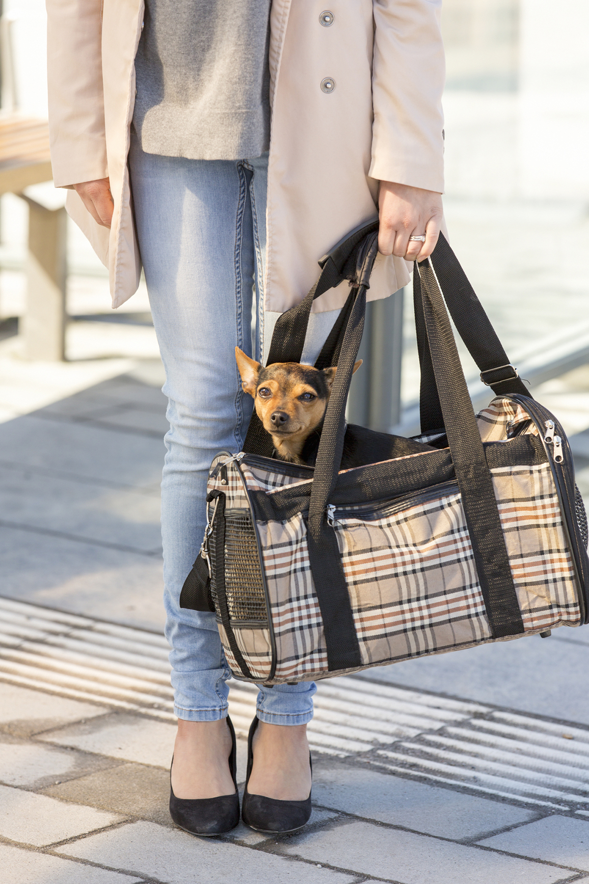 Photo of a woman carrying a dog in a bag