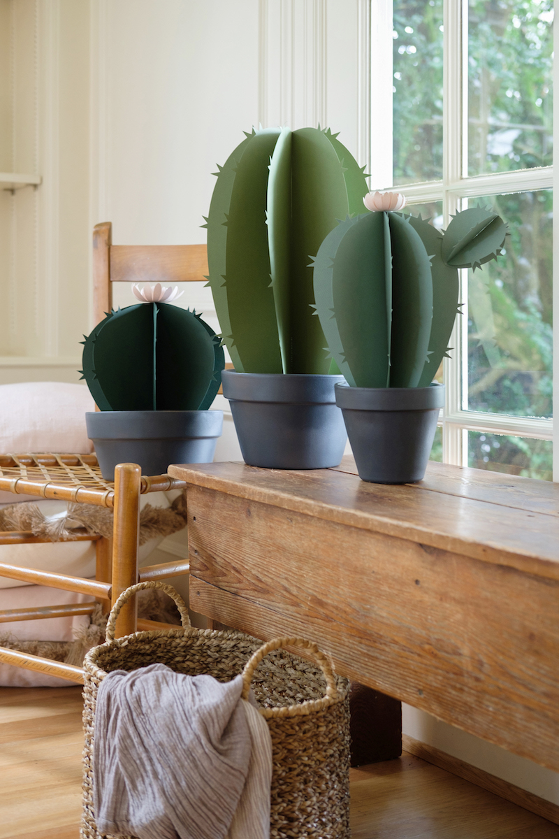 How to Make a Paper Cactus, with Lia Griffith