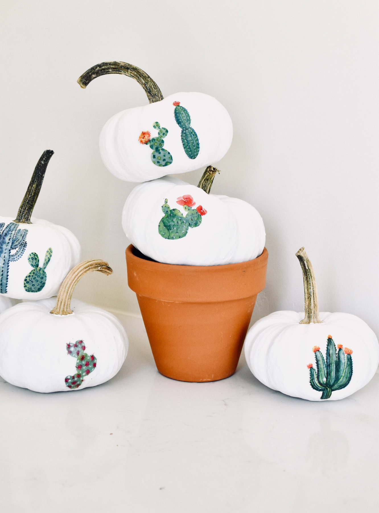 No carve pumpkin ideas - Mini Cactus Garden Pumpkins