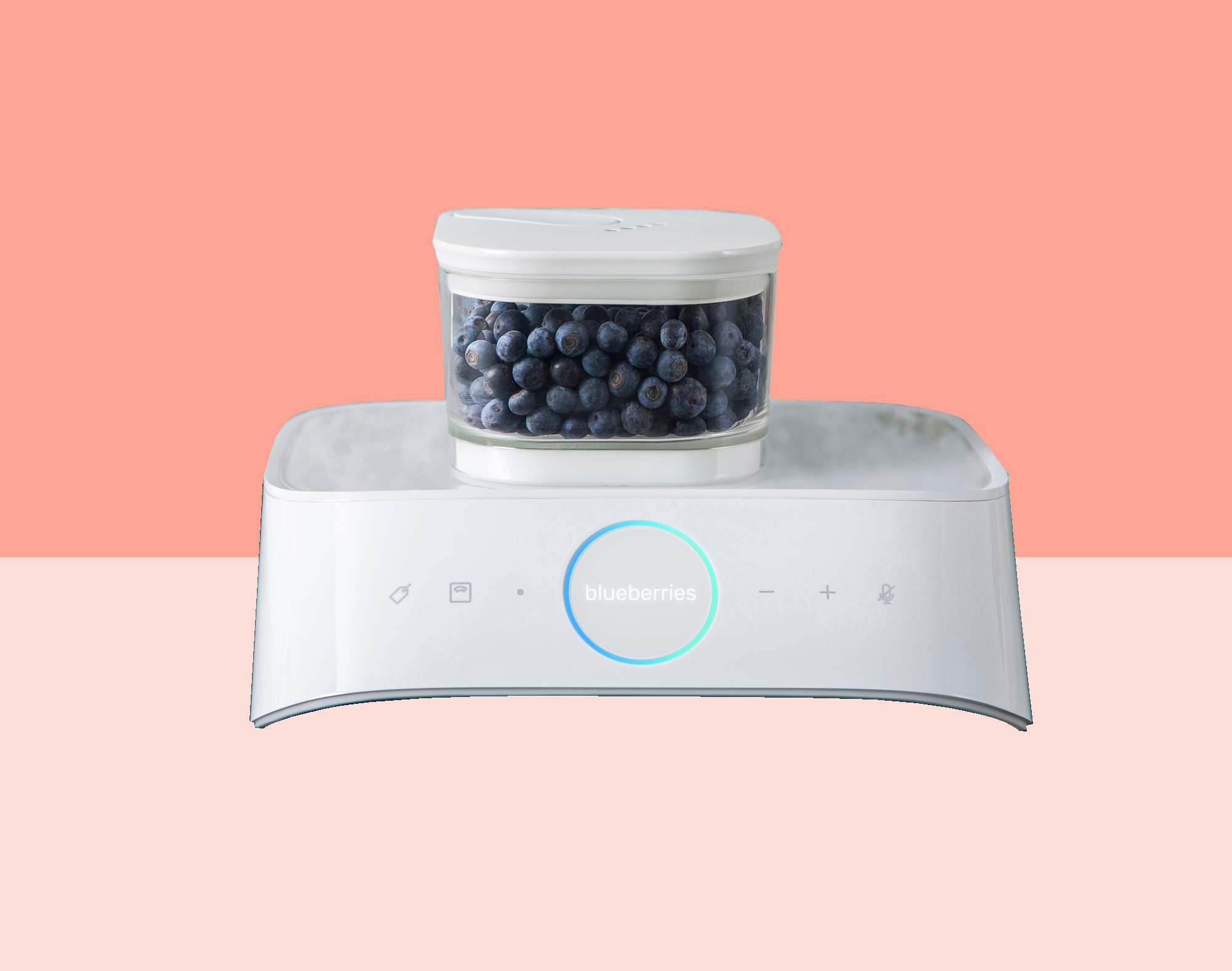 Vacuum Seal Container By Silo on counter