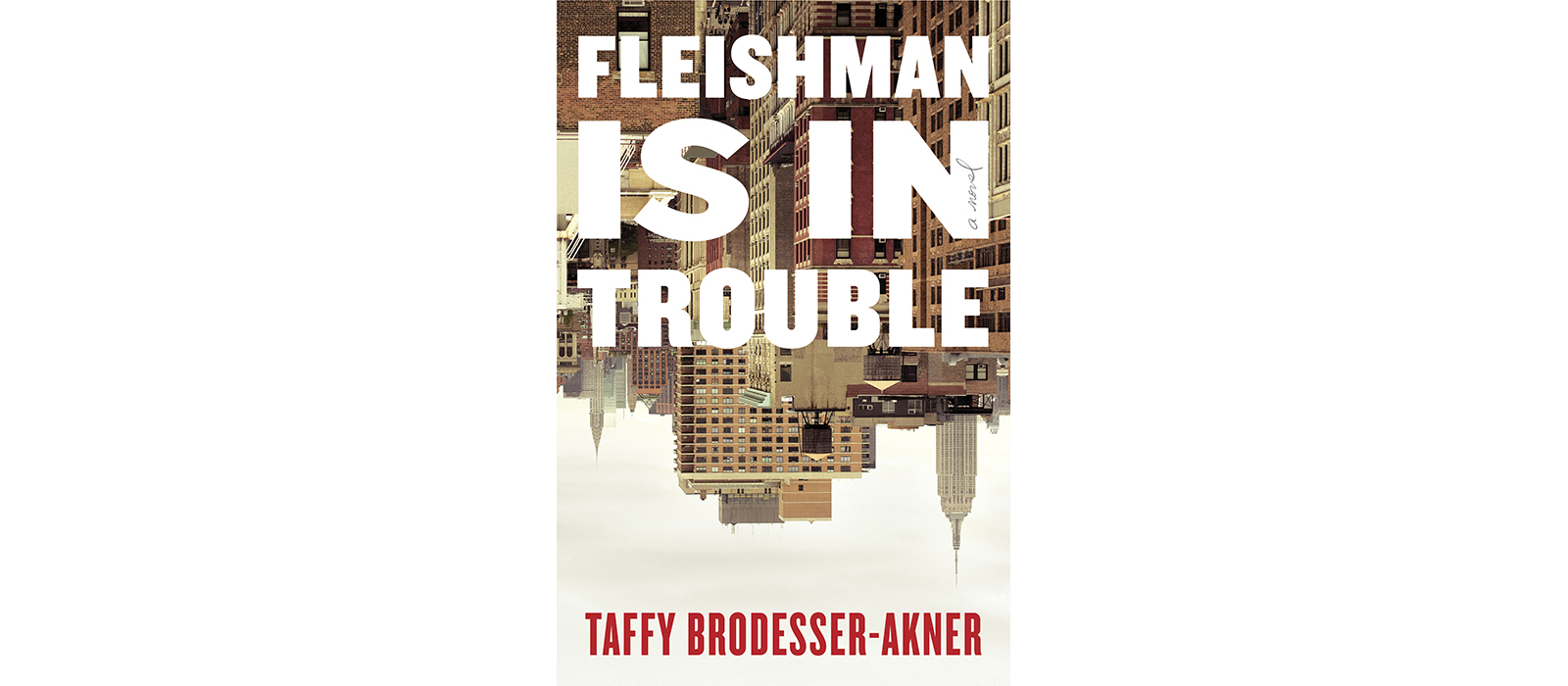 Cover of Fleishman Is in Trouble, by Taffy Brodesser-Akner