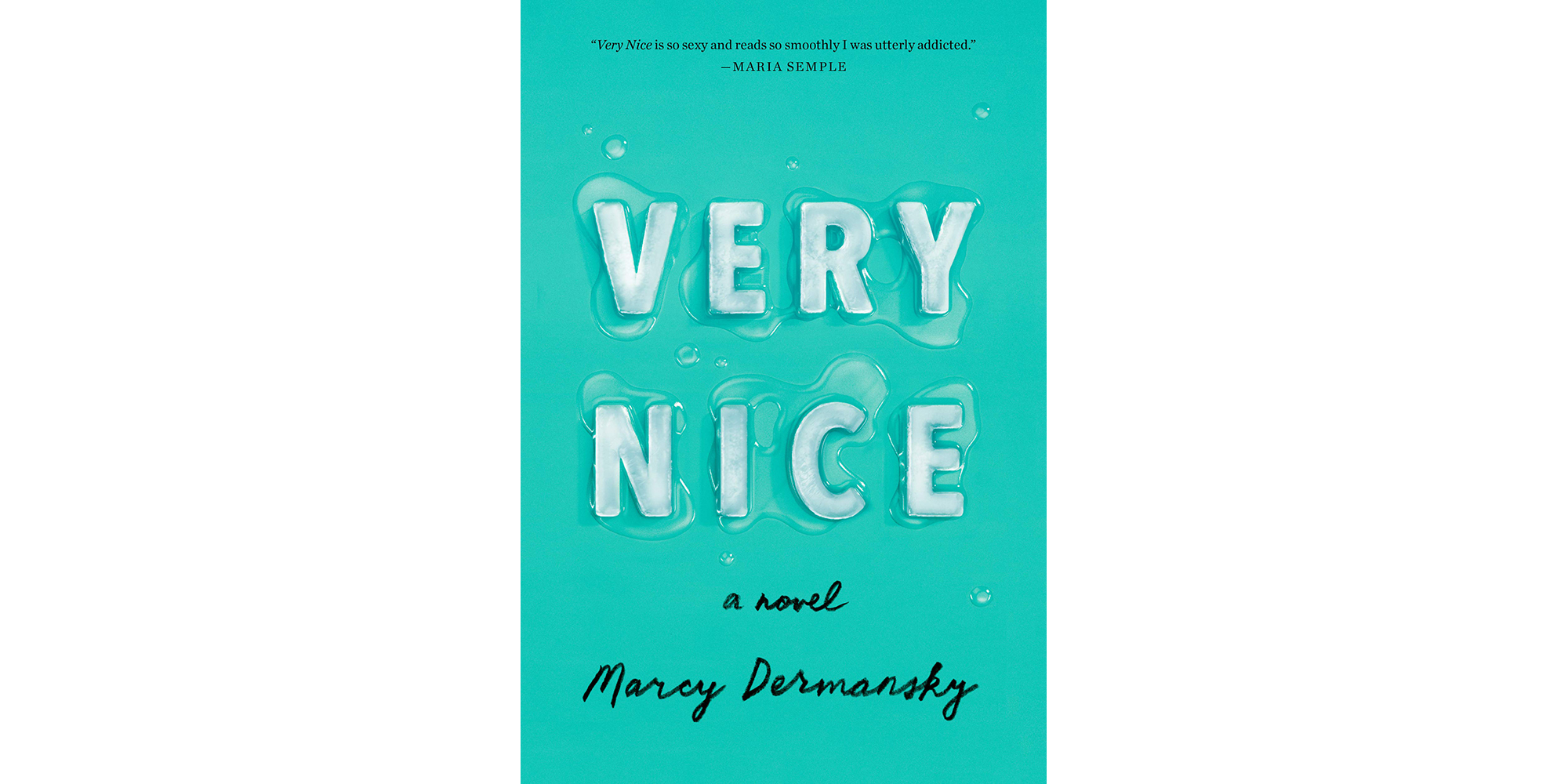 Very Nice, by Marcy Dermansky