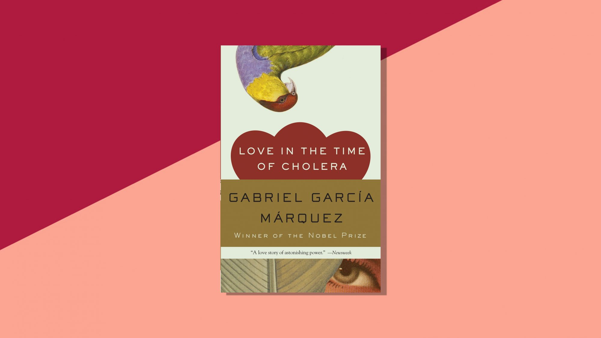 love-in-the-time-of-cholera-books-in-love
