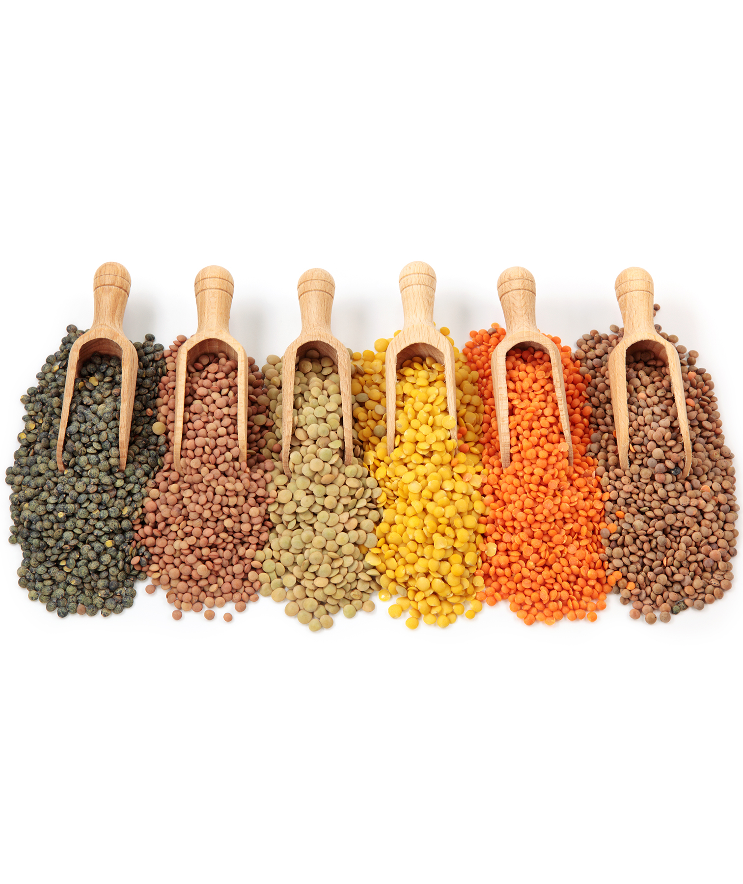 Various colors and kinds of lentils