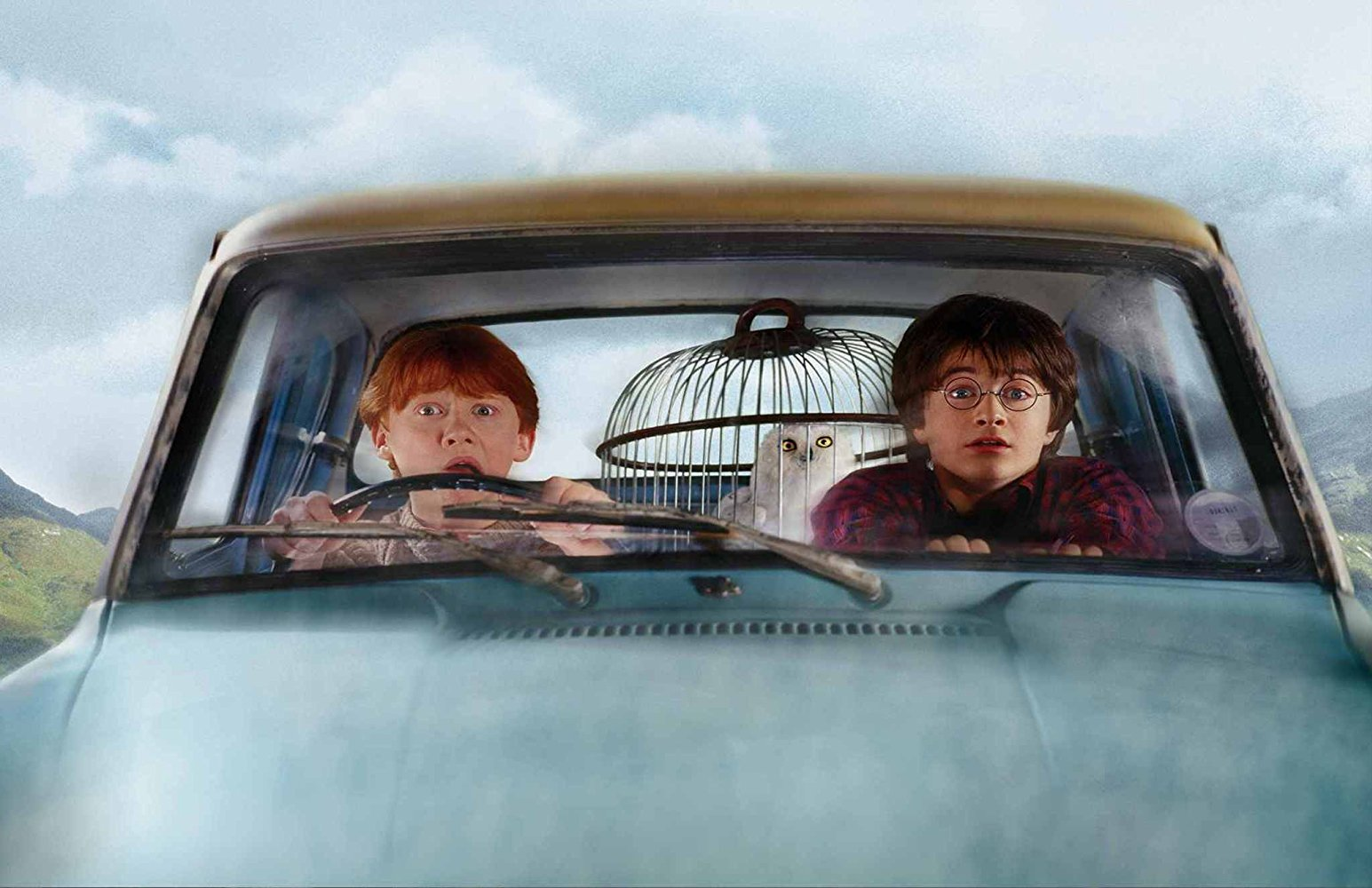 """Photo of Ron Weasley and Harry Potter in """"The Chamber of Secrets"""""""