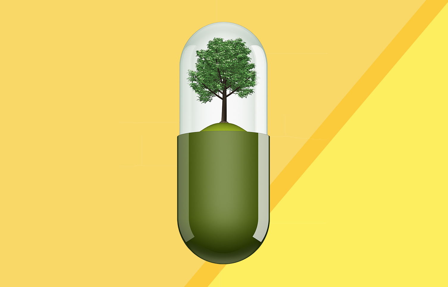 prescribing-plants