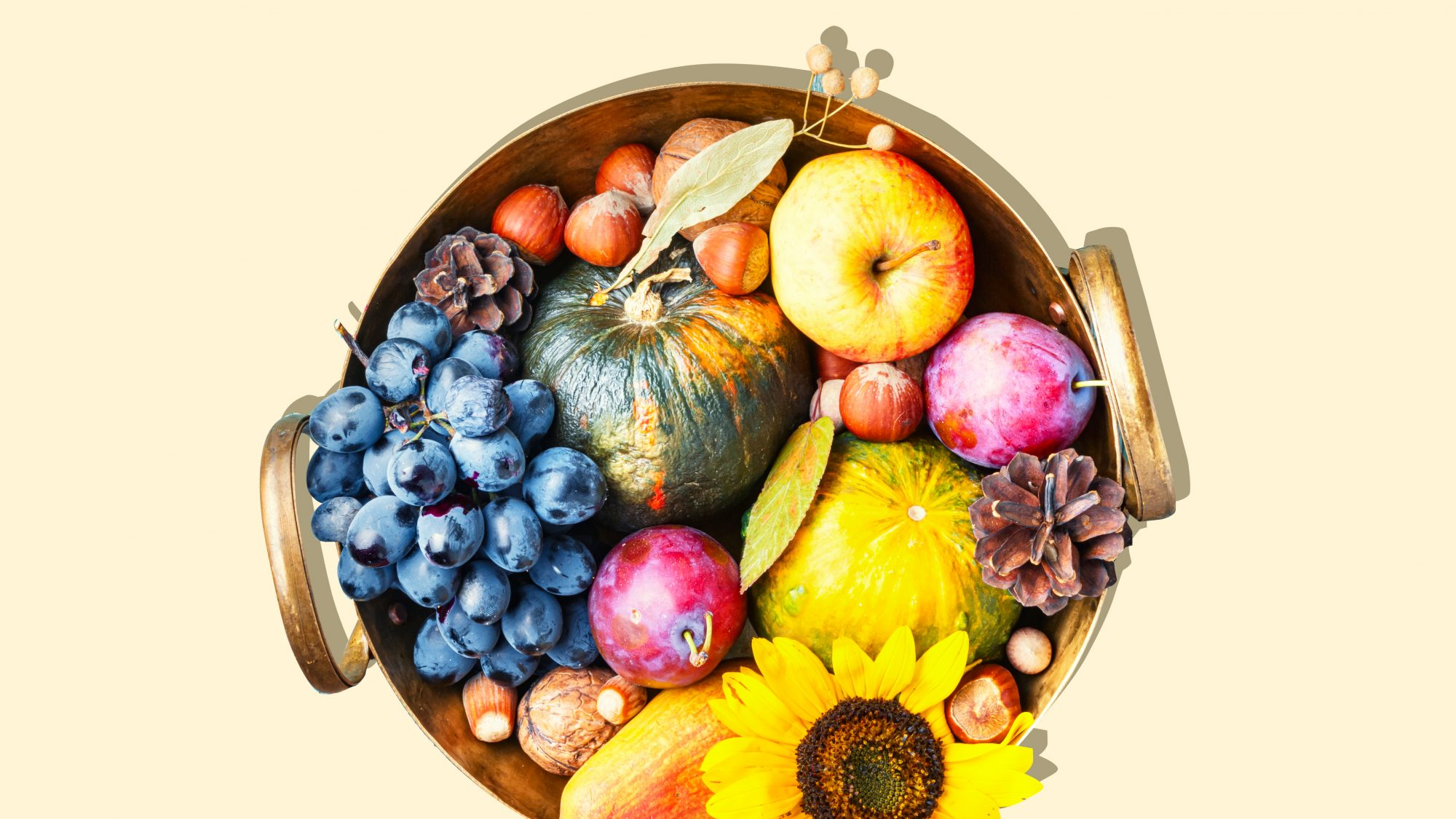 6 Fall Foods to Eat for Healthier Eyes and Better Vision