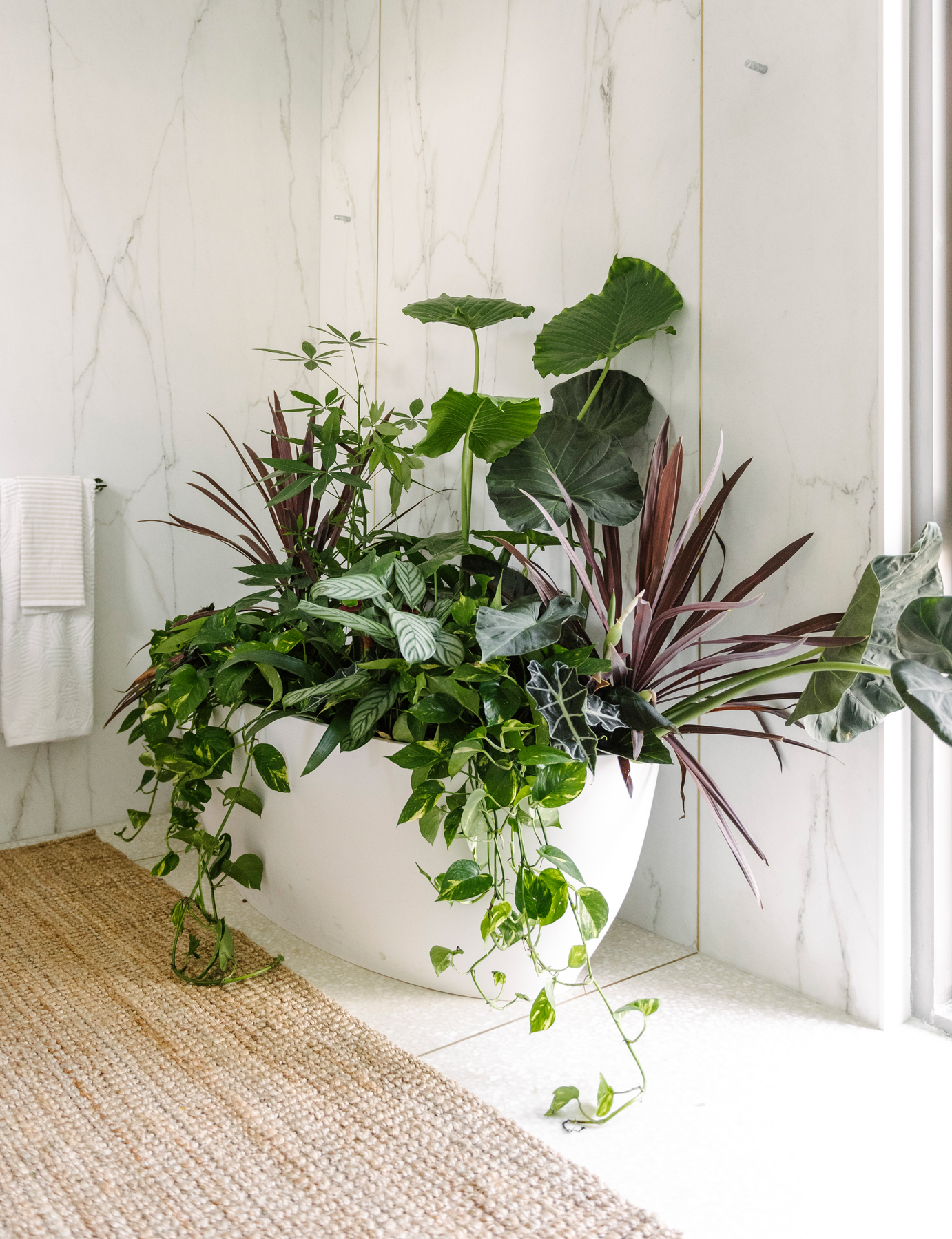 Where to store plants in winter - bathtub from West Elm Holiday House