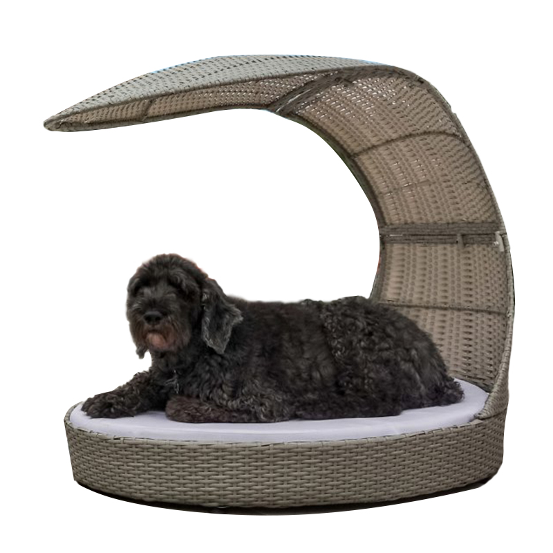 Pet Furniture: Refined Canine Outdoor Dog Chaise Lounger