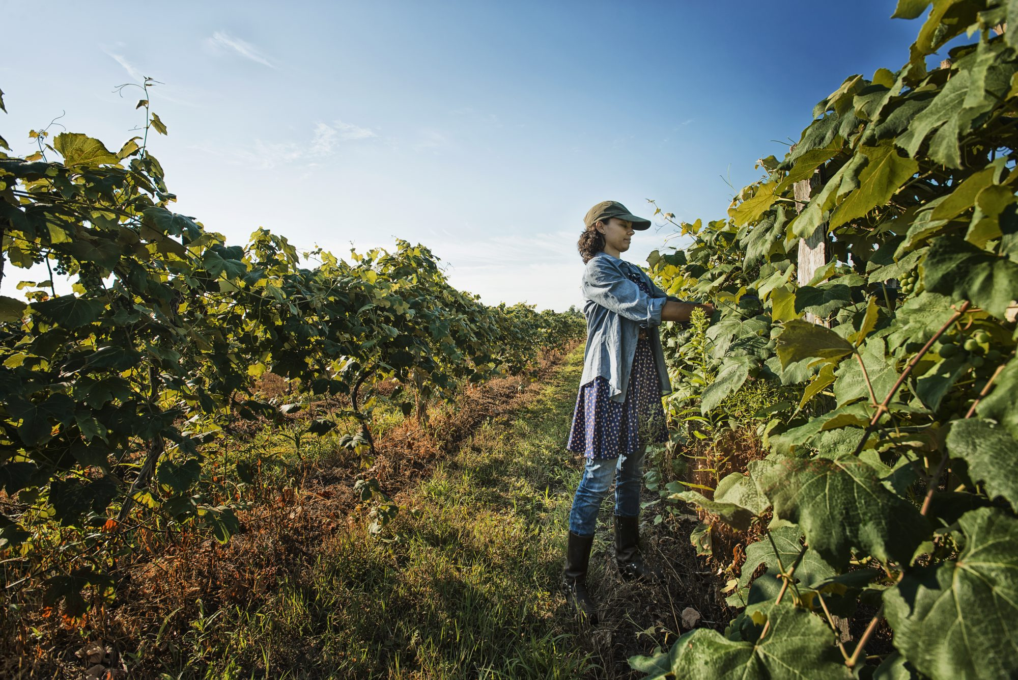woman tending to crops on her small farm